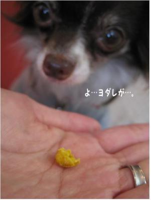 コピー (5) ~ kel