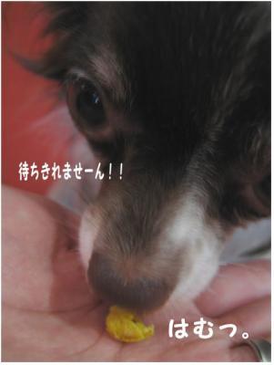 コピー (7) ~ kel