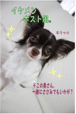 コピー (2) ~ 髪型