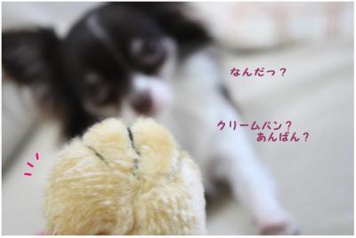 コピー (2) ~ メンテ