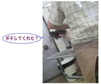 コピー (7) ~ メンテ