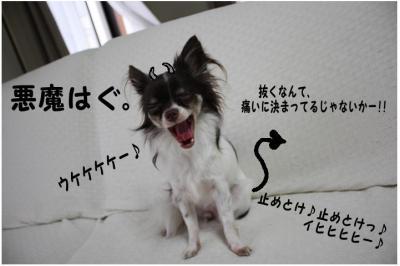 コピー (2) ~ tensi