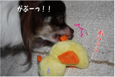 コピー (3) ~ ぴよ