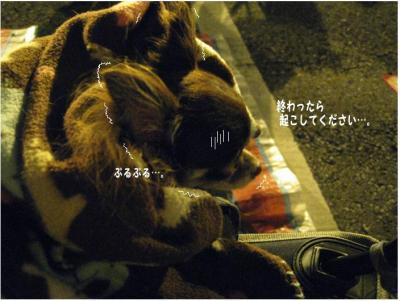 コピー (5) ~ 花火