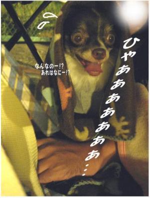 コピー (4) ~ 花火