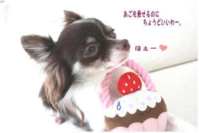 コピー (5) ~ 共演