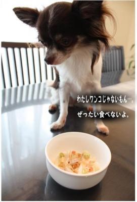 コピー (3) ~ うどん