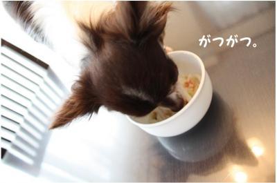 コピー (6) ~ うどん