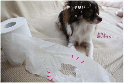 コピー (4) ~ うどん2