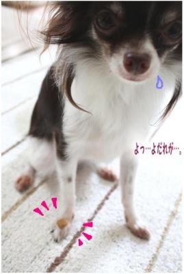 コピー (6) ~ 得意技