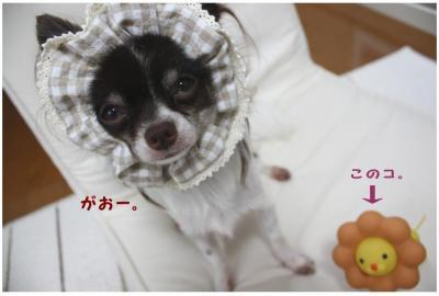 コピー (4) ~ ミシン2