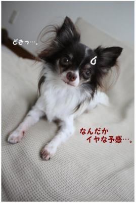 コピー ~ ミシン2