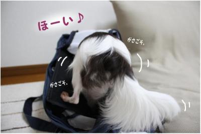コピー (4) ~ コピー ~ ミシン2