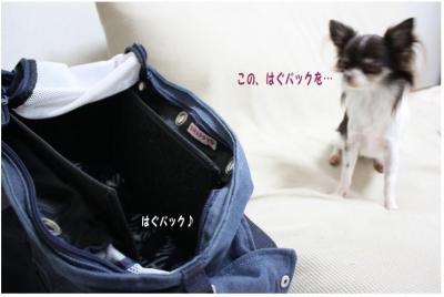 コピー ~ コピー ~ ミシン2