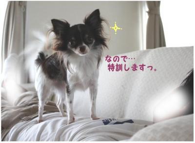 コピー (3) ~ 訓練2