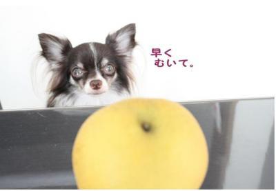 コピー (2) ~ おやつ