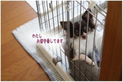 コピー (2) ~ 出発
