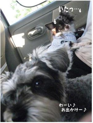 コピー (3) ~ 大阪2