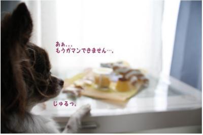 コピー (3) ~ プレゼント