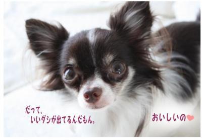 コピー (2) ~ くせ