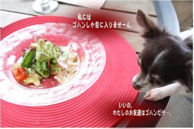 コピー (4) ~ 手酌隊