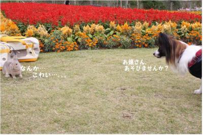 コピー (3) ~ 手酌隊2