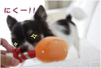 コピー (4) ~ お肉