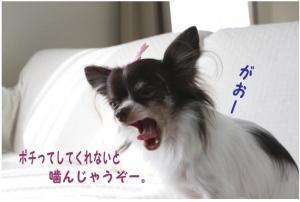 コピー (6) ~ ハロウィン