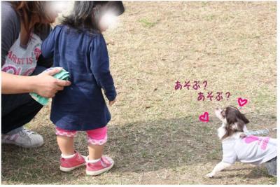 コピー (10) ~ どうめき
