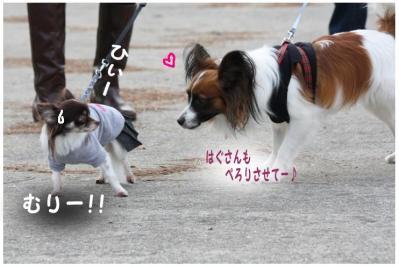 コピー (9) ~ どうめき3