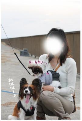 コピー (10) ~ どうめき3