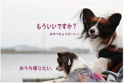 コピー (14) ~ どうめき3