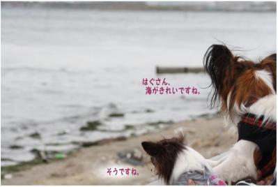 コピー (12) ~ どうめき3