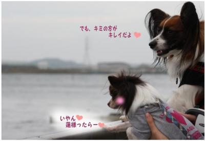 コピー (13) ~ どうめき3