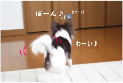コピー (3) ~ たまごちゃん