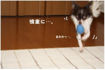 コピー (7) ~ たまごちゃん