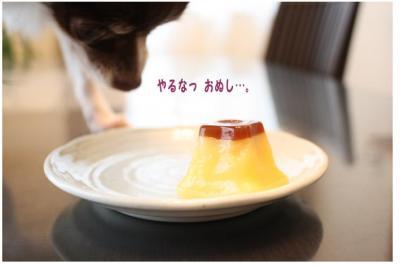 コピー (8) ~ ぷりん
