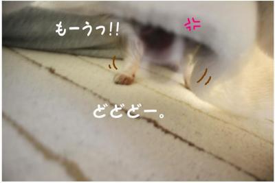 コピー (5) ~ 寒い