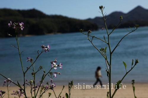 しまなみ海道IMG_9746
