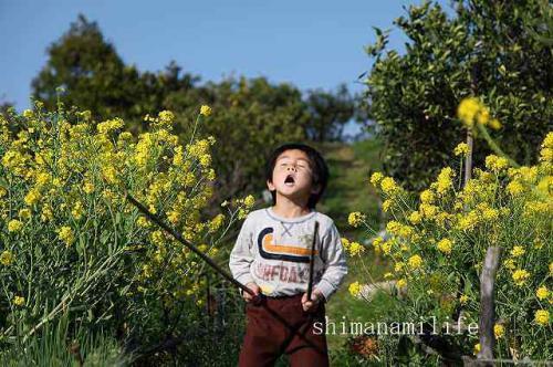 菜の花と子供IMG_10155_