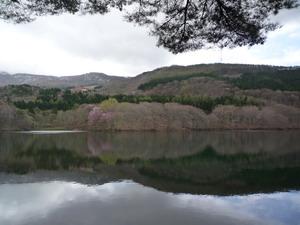 2009020304.jpg