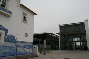2009080506.jpg