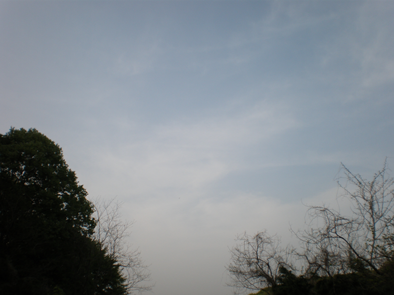 P4180199.png