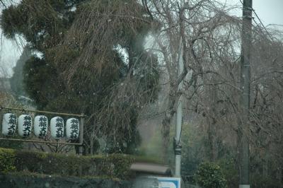 びっくり~すんごい雪が!!