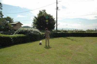 武田神社の前にある小さな公園?
