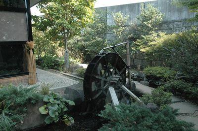 水琴茶堂さんまでは素敵なお庭を通って