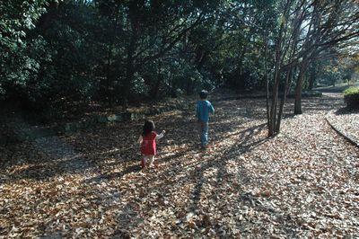 大池公園でちょっとだけお散歩