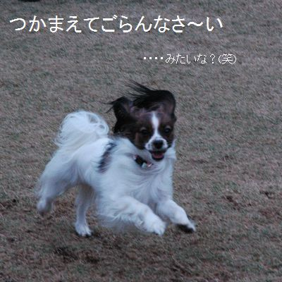 おーーーーほっほっほ(^0^*