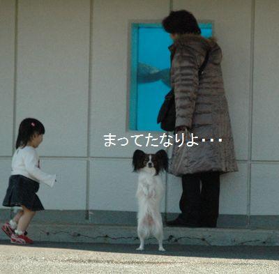 中に入れなかったので、レニャンは外でイルカさんを見てました