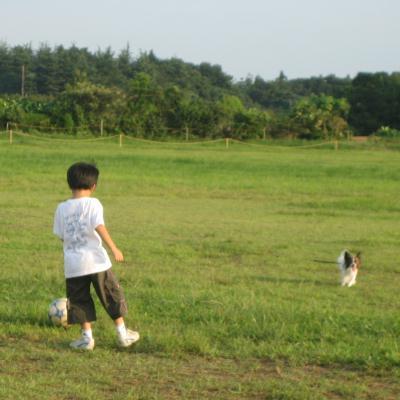サッカーするのにゃ